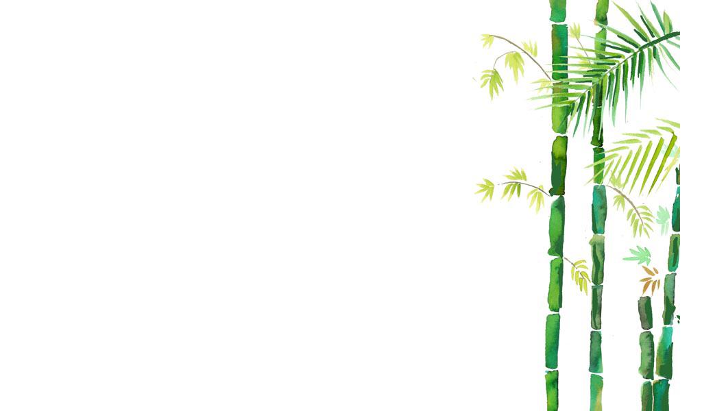 2016-landscape-FS-bambu